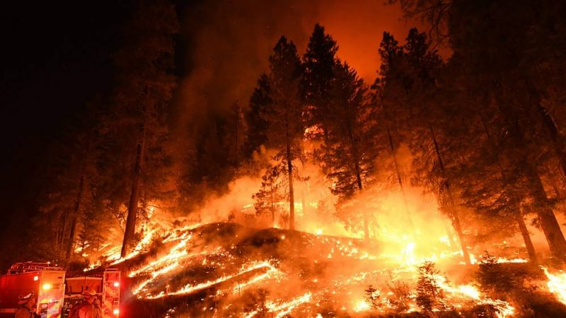 2e98d928 According to the National Interagency Coordination Center, 1.8 million  acres of land was burned in California last year, making 2018 the worst  wildfire year ...